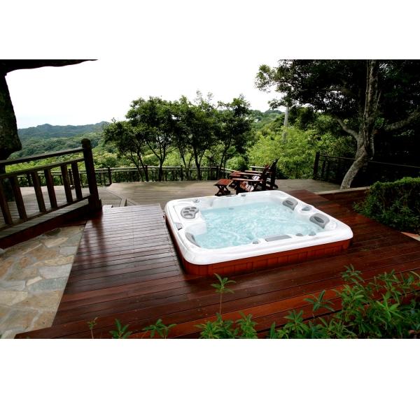 acheter spa spa capri srie 880 sundance spas en 2 3 places sundance spas chez. Black Bedroom Furniture Sets. Home Design Ideas