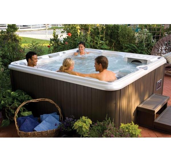 acheter spa spa hamilton srie 780 sundance spas en 5 6. Black Bedroom Furniture Sets. Home Design Ideas